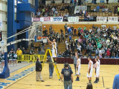 taking down the net