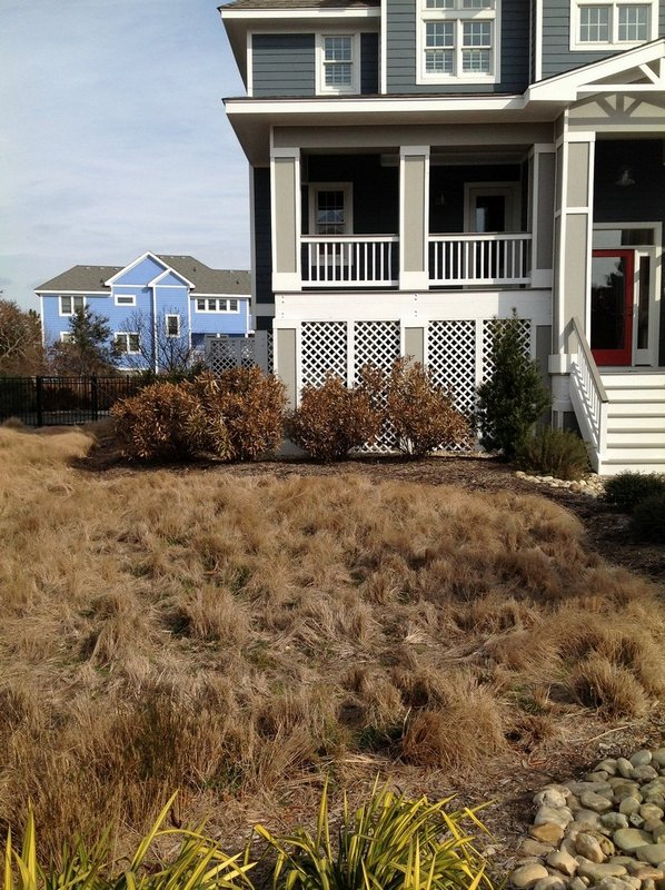 corolla-landscaping-before-1