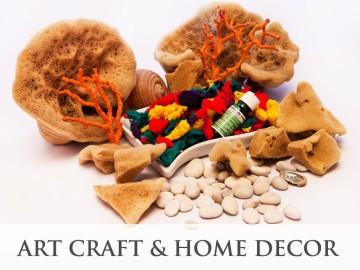 Art Craft & Home Decor Sponges - product category, SeaSponges.eu