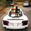 Audi R8 Ski Rack
