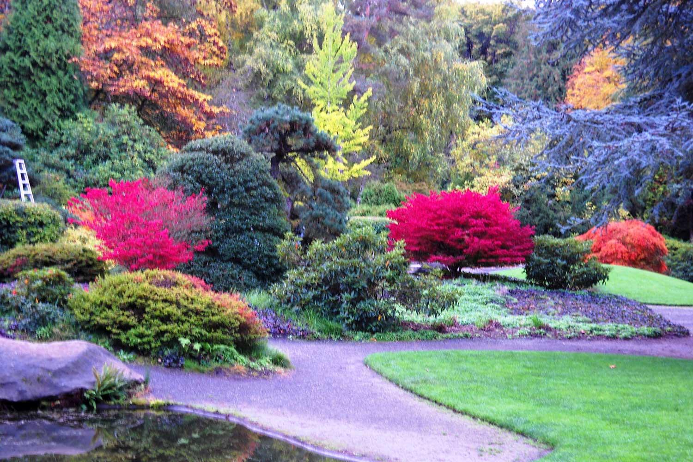 Kubota Garden - Parks
