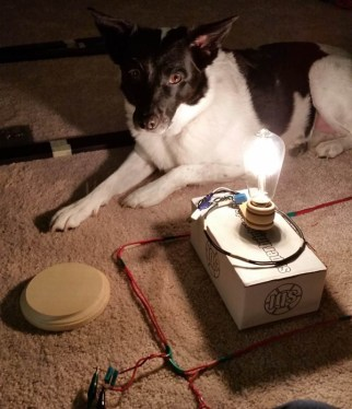 wireless_power_teslapup