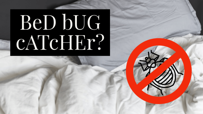 bed bug catcher text with no symbol on top of bed bug on bed