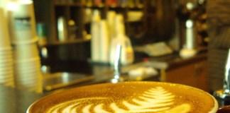 seattle-coffee-scene-herkimer