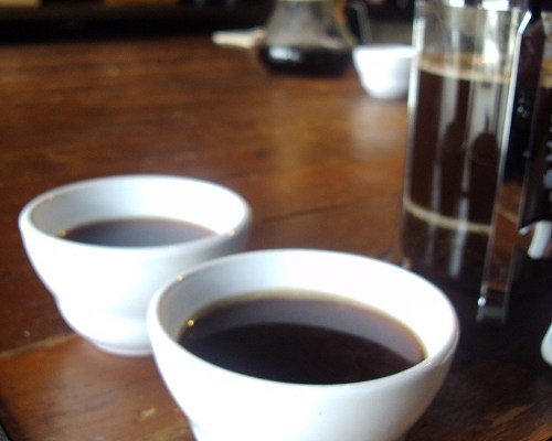 Cupping Mondays at Roy Street Coffee & Tea – Seattle Coffee Cuppings