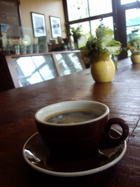 seattle coffee - volunteer park cafe