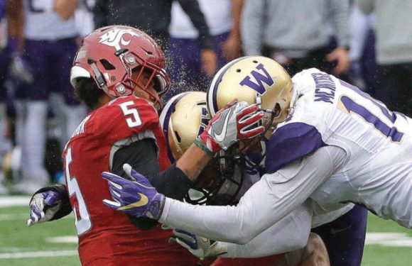 Houses divided as Apple Cup has title implications