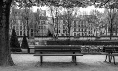 Benches along the Seine.