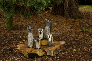 """A Parliament of Owls"" by Rosa Martinez Manzano – Photographed by Marta Stoklosa"