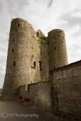 Delvin Castle - (C) Marta Stoklosa