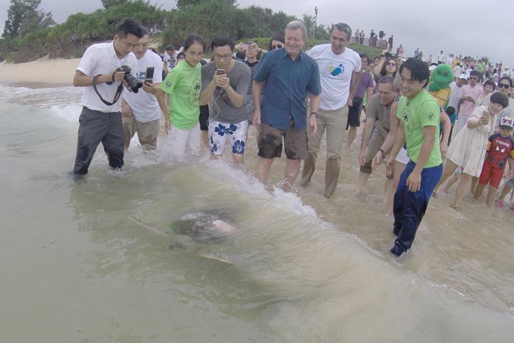 U.S. Ambassador Releases And Grants Sea Turtles Amnesty In