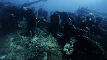 Clip 39: Shipwreck. Dive site: Schlemmerstad Wreck