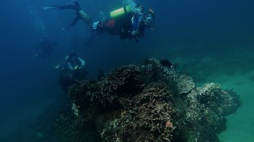 Clip 45: Wreck covered in coral with drifting divers including Alex from Sea Breeze Marine. Dive site: Schlemmerstad Wreck