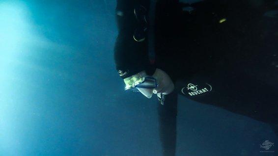 freediving static apnea