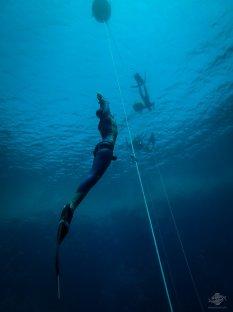 Sahika Ercumen free-diving at blue hole dahab