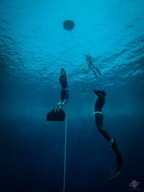 Sahika Ercumen free-diving at blue hole dahab