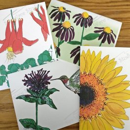 Flower drawings note card set
