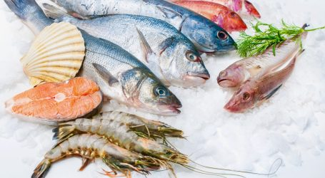 Seafood nutrients and why you need them