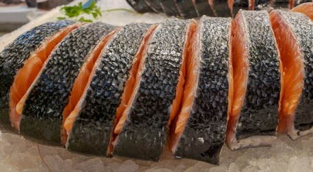 Salmon – Farmed and Nutritious