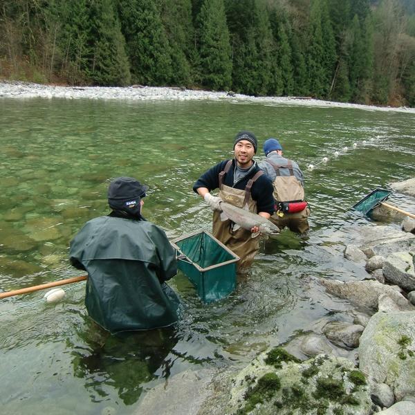 British Columbia salmon fund