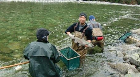 Broad range of interest for new B.C. salmon fund