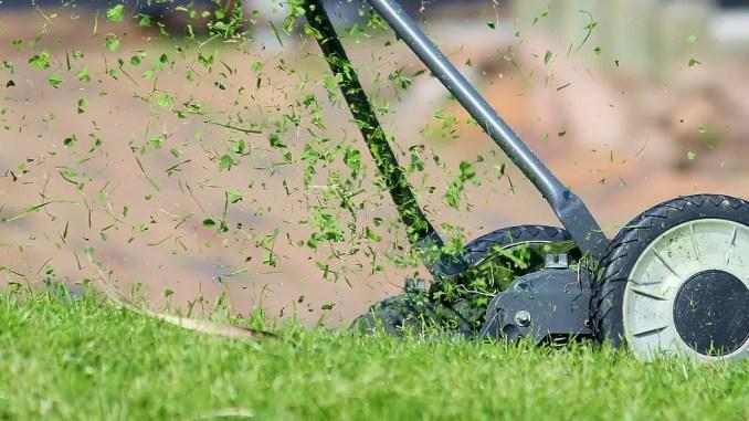 - lawn-mower-938555_1280