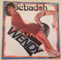 Sebadoh Asshole Wendy