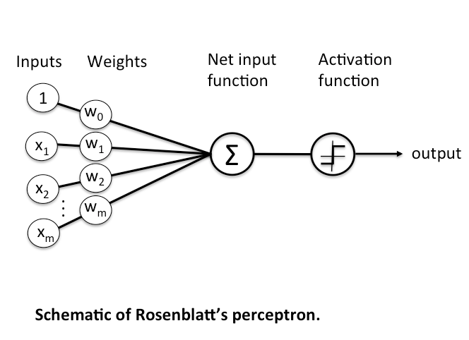 Image result for rosenblatt's perceptron