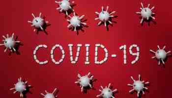 vitamin D may cure Covid-19