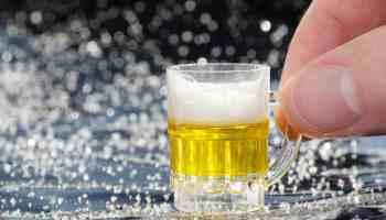 Moderate alcohol consumption small beer mug