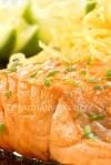 Salmon Macro
