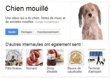 Google Nose odeur de chien mouillé