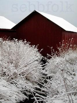 Sjöbodar och rimfrost