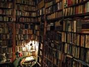 book-porn