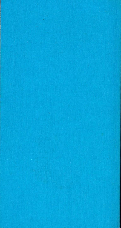 Die Reise ins Blaue - Rückencover