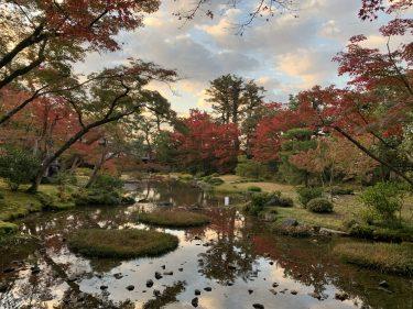 GoToトラベル! 京都・大阪の旅② ~紅葉の京都を満喫・後編~
