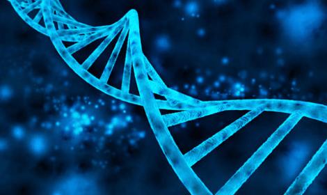 Beeldresultaat voor genetica