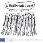 immagine del gruppo sul social