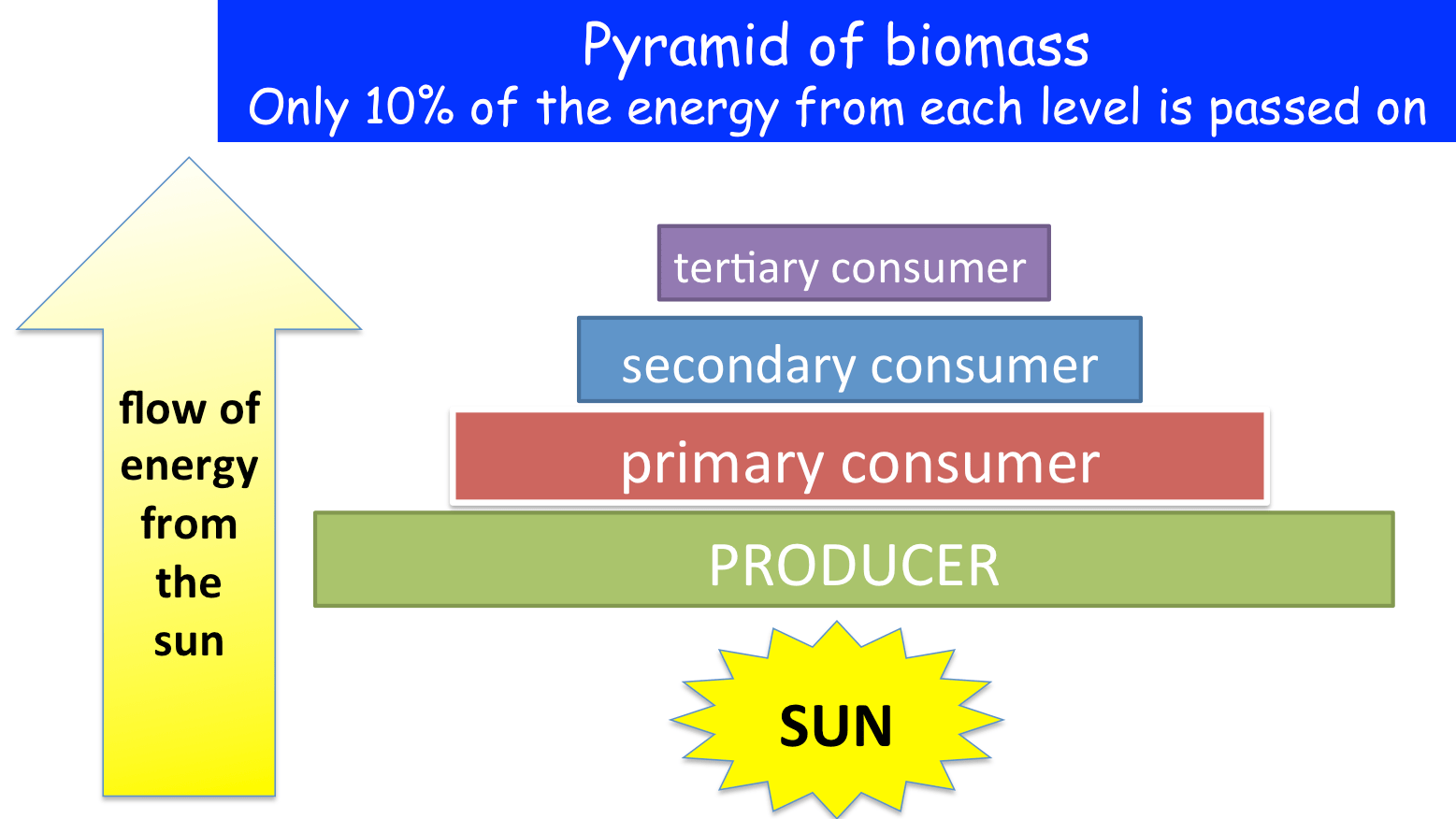 Equation For Efficiency Of Energy Transfer In A Food Chain