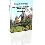 Living with a Brain Injury, What Helped Me to Stop Being my Enemy and Create a Life for Myself e Book