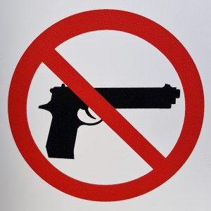 School Shootings, Gun Control and Solutions for School Safety