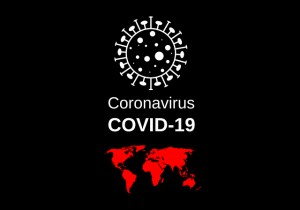 Living with a Brain Injury, the Covid-19 Virus and Feelings of Isolation Video Presentation