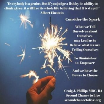 Consider the Spark of Your Greatness after a Brain Injury (Click on each Poster to Enlarge)