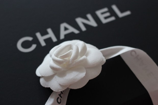 Chanel and camelia ribbon
