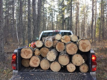 This was some wood my husband and I got out of the woods two years ago.