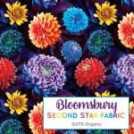 bloomsburylogo