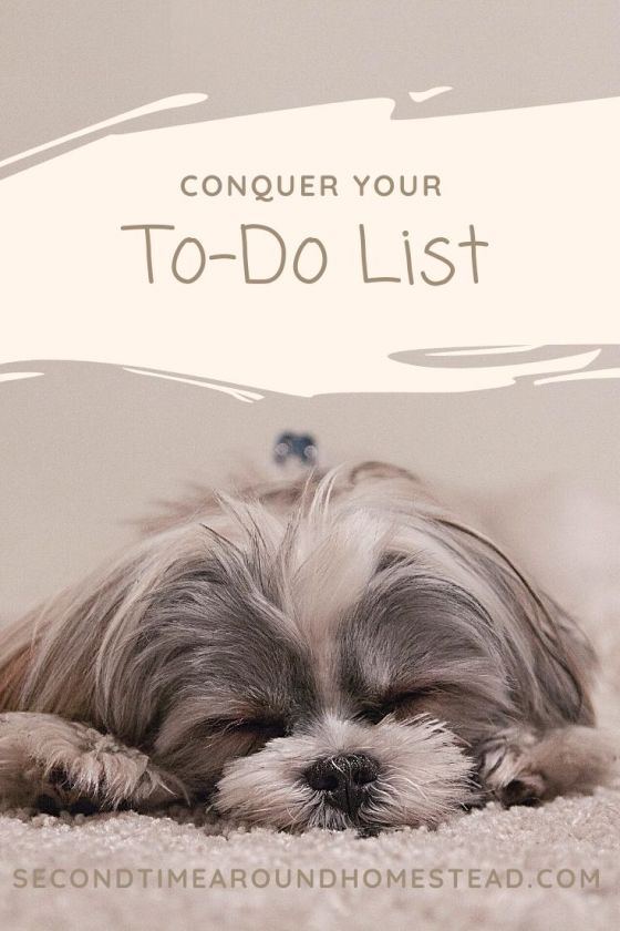 """cute sleeping puppy in shades of grey with the words """"conquer your To-Do List"""" and """"secondtimearoundhomestead.com"""""""