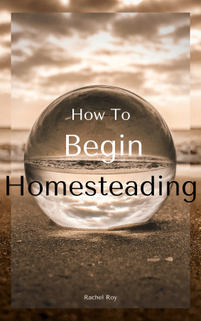 """The cover image for """"How to begin homesteading"""" by Rachel Roy in tones of brown. The title is in front of a crystal ball sitting in the sand and in front of a view of lake and hills."""