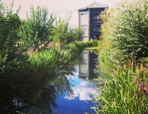 wetland centre barnes