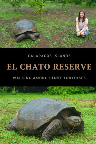 Galapagos Islands - El Chato Reserve